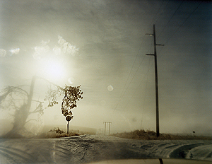 ToddHido